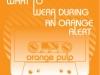 orange_pulp